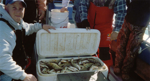 Another Cooler of Lake Erie Yellow Perch